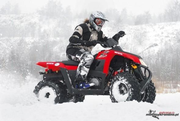 polaris-trail-blazer-330-2010-03.jpg